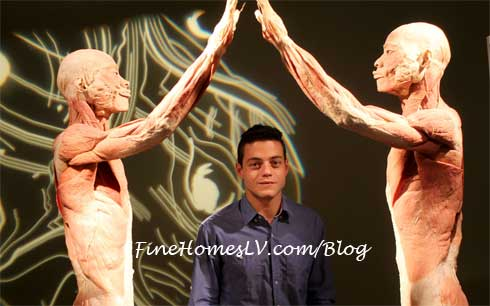 Rami Malek at BODIES The Exhibition