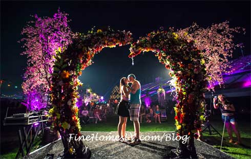 Electric Daisy Carnival Fans Marriage