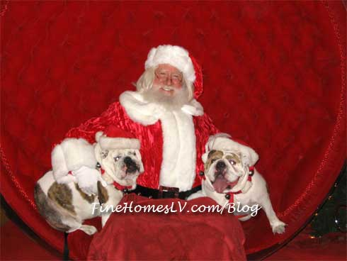 Pet Night With Santa Claus