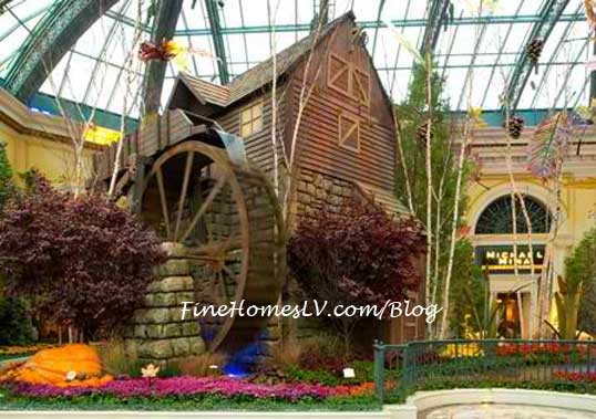 Cider Mill at the Bellagio Conservatory