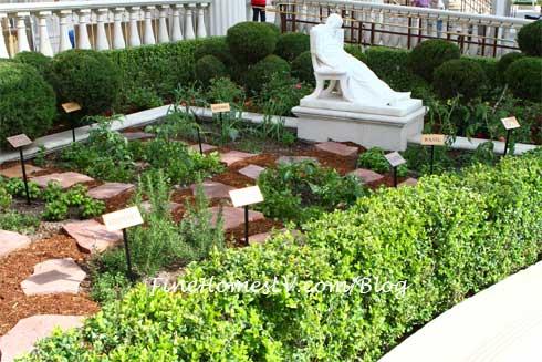 Serendipity 3 Herb Garden