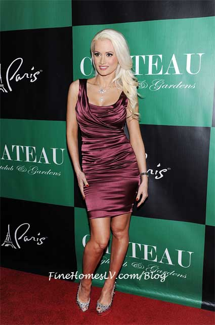 Holly Madison On The Red Carpet