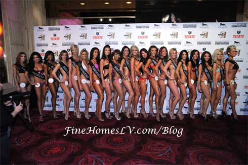 Miss Knockout Finalists