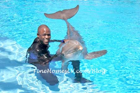 Wayne Brady and Dolphin