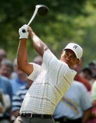 Tiger Woods Golf Pro